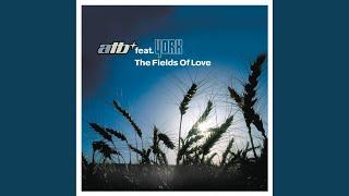 The Fields Of Love Instrumental