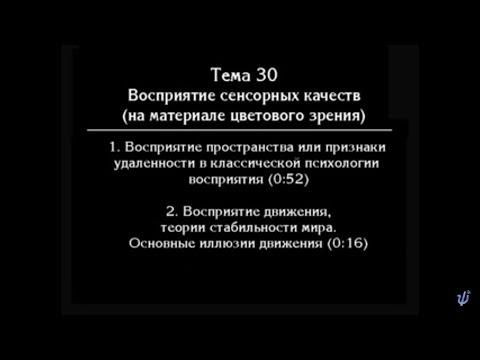 В. В.  Петухов.   Лекция № 42. Восприятие пространства и движения.