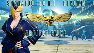 Shadaloo C.R.I. Report: Project Falke