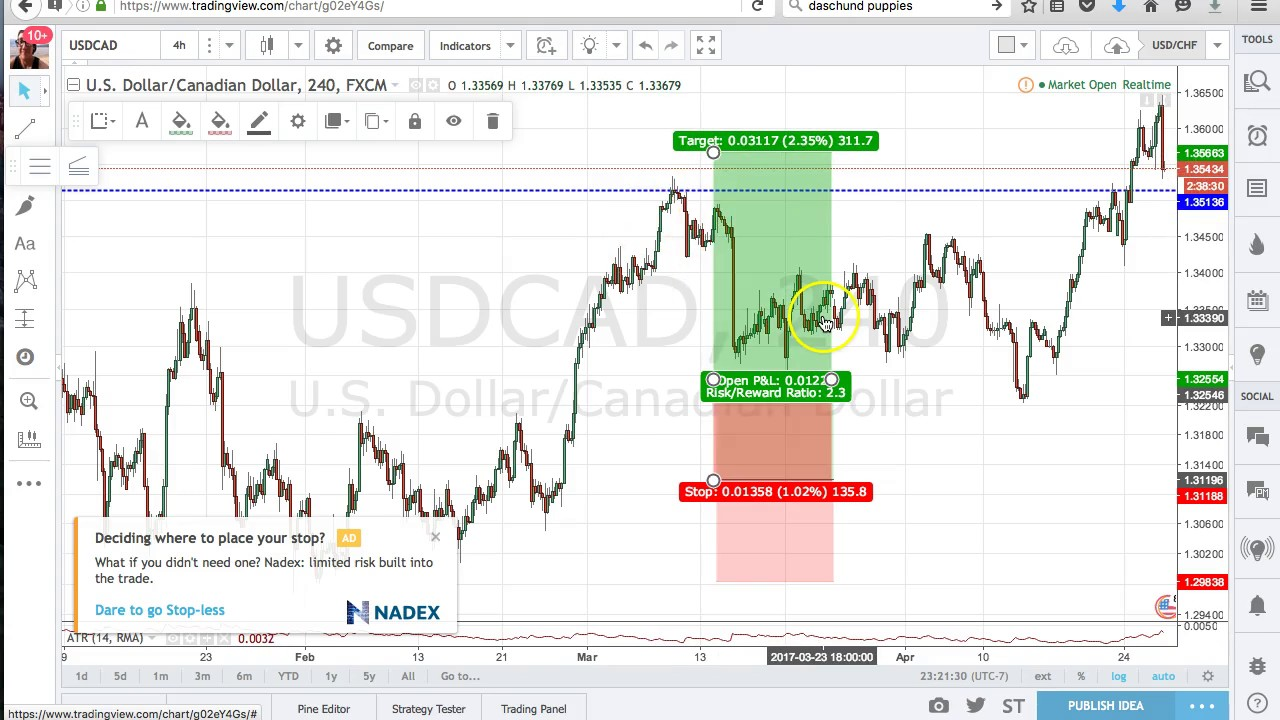 Free forex charting software download