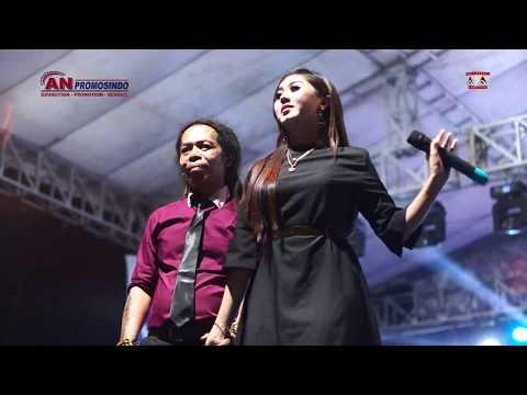 Memandangmu - Fibri Viola Ft Sodiq - New Monata Live Blitar Expo AN Promosindo