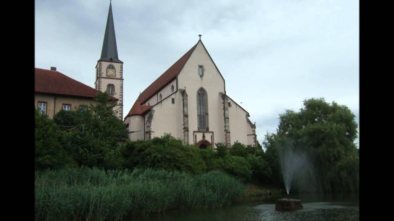 Störche Hammelburg