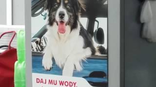 ORLEN Запрввка в Польше. Забота  о животных. 2018
