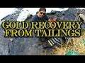 Gold Recovery from Tailings