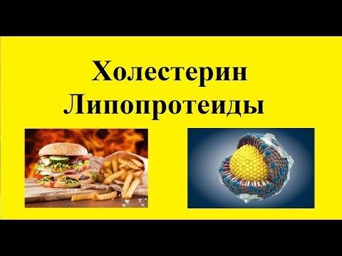 Холестерин и липопротеиды