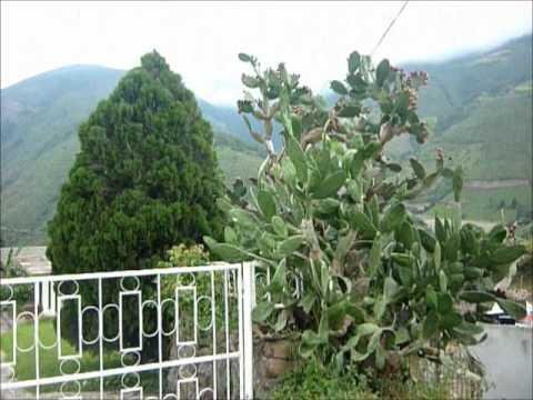 En merida renta 5000 pesos casa amueblada en la perla c for Villa jardin caucel