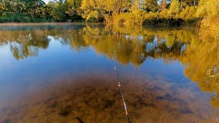 Float fishing for perch