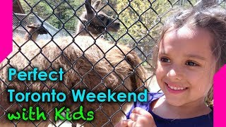 Summer Weekend in Toronto - Things to do in Toronto with Kids