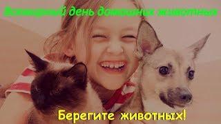 Всемирный день домашних животных  БЕРЕГИТЕ ЖИВОТНЫХ!  TAKE CARE OF ANIMALS
