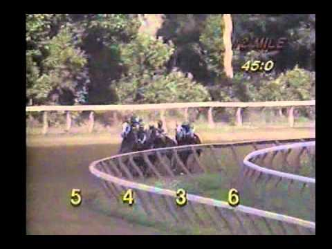 Saratoga - 8-10-1994 - Full Race Card