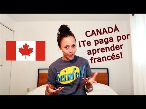 Canadá ¡Te Paga Por Aprender Francés!