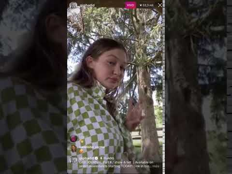 Gigi Hadid enseña su panza de embarazada