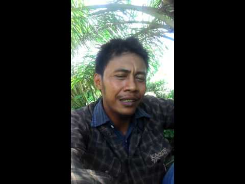 Bungana Lino