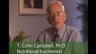 """T. Colin Campbell Interview """"The China Study"""" at Hippocrates Health Institute"""
