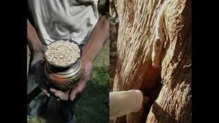 Medicinal Rice P5J Formulations for Dumasia Excess: Pankaj Oudhia