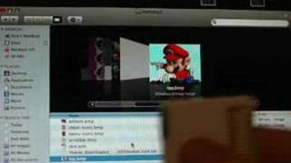 How to install themes on Nintendo DS flash card.