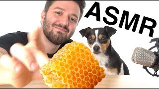 ASMR EATING HONEYCOMB WITH DOG (EATING SOUNDS)