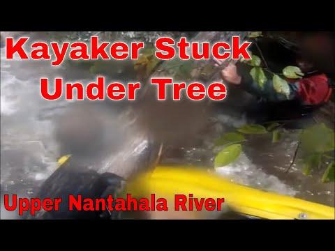 Kayaker stuck In Tree Strainer