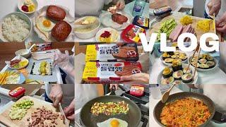 튤립햄으로 간단하게 요리해 먹는 자취생의 자취 일상 요…