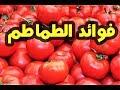 لن تصدق فوائد أكل الطماطم على الريق فوائد صحية تجبرك على تناولها !!