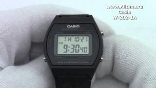Мужские японские наручные часы Casio W-202-1A(Подробное описание: http://www.alltime.ru/catalog/watch/374/casio/Man/9184/detail.php?ID=489005&back=list., 2013-04-16T13:00:32.000Z)