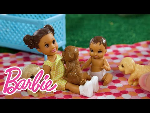 Skipper Babysitters Inc. Double Booked   Babies & Puppies Summer Park Party   Barbie