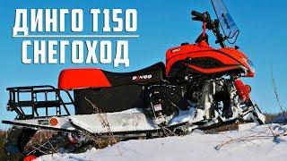 Динго Т150 снегоход производства 2018 года (тест драйв)