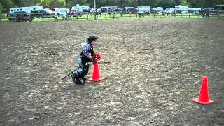 Stick Horse Competition - Viola Horse And Colt Show
