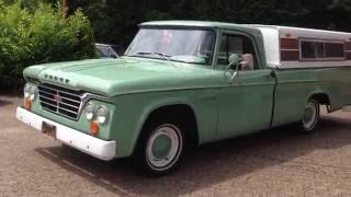 Doge D100 Pickup aus 1964 rent by carsformovies.de