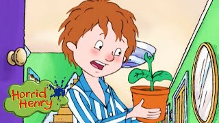 Horrid Henry - Henry and the Perfect Plant | Videos For Kids | Horrid Henry Episodes | HFFE