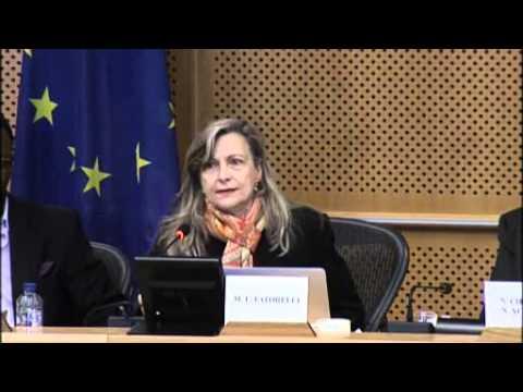 Restructuring Debt – Rebuilding Democracy - Maria-Lucia Fattorelli - EP - 1 march 2016