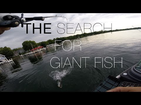 The Search For Giant Fish! Lake Geneva, WI