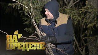 Ночь в зимнему лесу | На пределе с Александром Колтовым