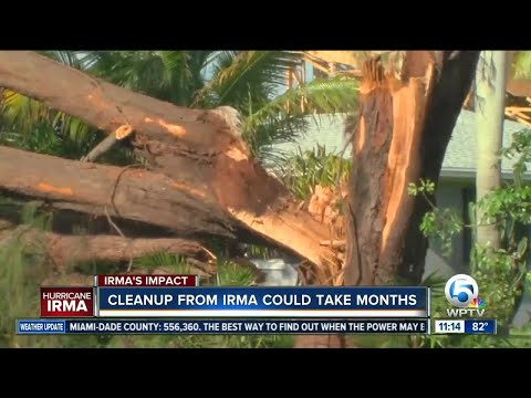 Irma cleanup could take months, how to do your part