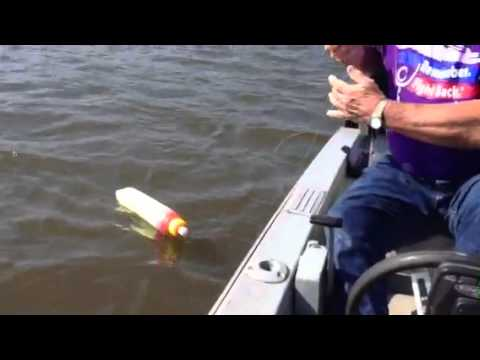 Lake gaston juging for monster catfish youtube for Lake gaston fishing report
