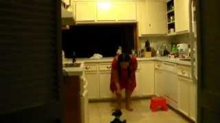 Miniature Schnauzer 13 Weeks  Tricks  Down Stay Wait Sit  Leave It Mom 31 Weeks
