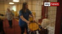 Coronavirus: Care home staff too scared to work