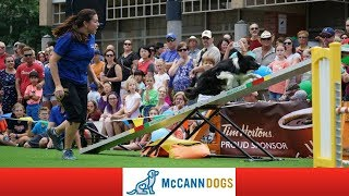 🔴Live! McCannDog Stars Show Dundas Cactus Festival thumbnail