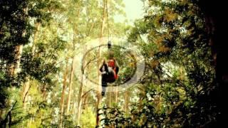 Zip Lining at Otway FLy Tree Top Adventures