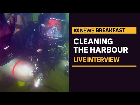 This diver is cleaning Sydney Harbour for 24 hrs non-stop | News Breakfast