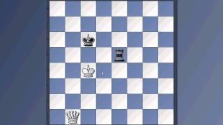 let´s play Schach - Ich besiege Fritz 9 im Endspiel Dame vs Turm