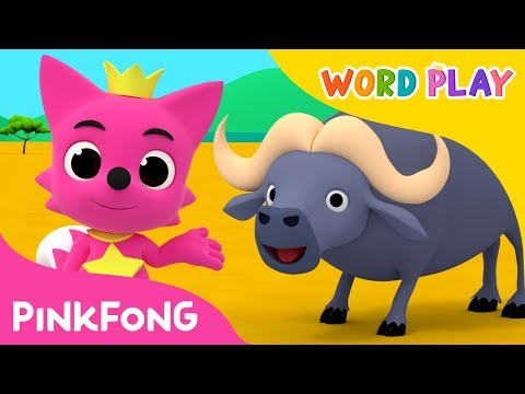 Buffalo | Word Play | Pinkfong Songs for Children