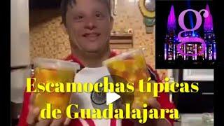 Guadalajara tv - Escamochas