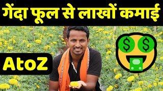 गेंदा फूल की HI-TECH उन्नत खेती कैसे करे???🤔🤔Best Profitable Marigold Farming in india