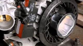 Ecotrons EFI Kit on Briggs & Stratton Junior 206 engine