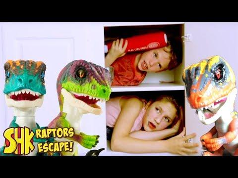 Mystery Box FOUND! (UNTAMED RAPTORS ESCAPE!) SuperHeroKids