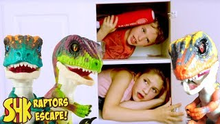 Mystery Box FOUND! (UNTAMED RAPTORS ESCAPE!) SuperHeroKids