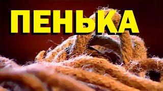 Галилео. Пенька(444 от 15.10.2009 Из чего делают пеньковую веревку? Особые свойства пеньки для морского дела. Редактор сюжета:..., 2015-11-27T08:00:00.000Z)