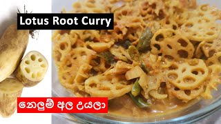 Sri Lankan Lotus Root Curry (නලම අල රසට උයල)