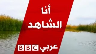 أنا الشاهد: أهوار الجبايش المدرجة ضمن لائحة التراث العالمي في العراق